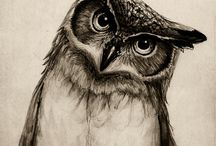wise old owl / by jEFF sCOTT