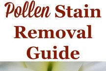 Stain remover for flower pollen