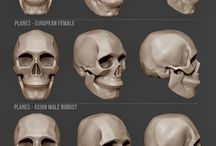 zBrush / Topology Painting Sculpting