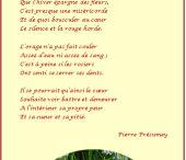 poème du mois