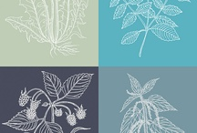 botanical ink / by Valeria Juillet