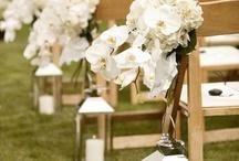 Wedding church aisle