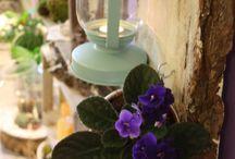 studio florystyczne / Nasze studio florystyczne