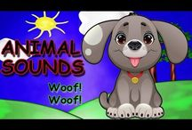 Animal Sounds Activity Song