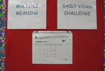 Multiple meaning words / by Paige Silsby