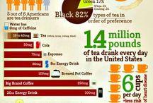 progocean facts