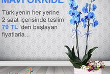 Çiçek Atölyesi