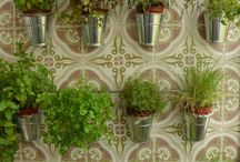 horta e jardinagem