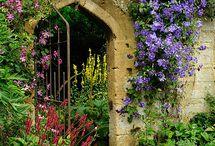 Zahrady, parky, lesoparky a ZOO - parky