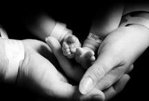 Newborn Hospital Photography / by Rachelle Bolton