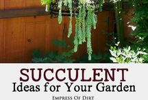 Succulentgeertleenders1@gmail.com