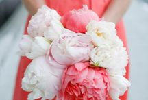 Pretty flowers / by Mona Hanford