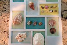 pebble & shell art