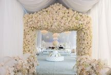 wedding dream / dream wedding