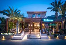 EDELWEIS Coktail Bar / A tropical designed Coktail Bar in a Malia of Crete by Manousos Leontarakis & Associates