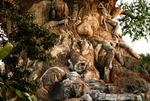 Disney: Animal Kingdom / Pins relating to Animal Kingdom