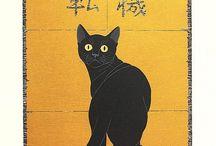 jp cat