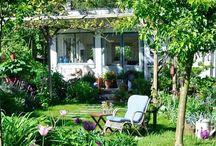 Volkstuin en tuinhuisjes