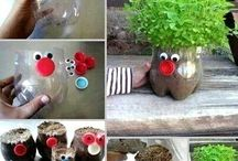 jardin pot
