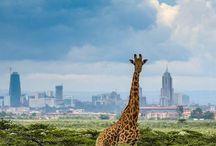 TRAVEL Nairobi Kenya / TRAVEL Nairobi Kenya