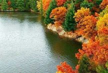 Fall Colours in the Laurentians