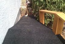 Doggy Ramp