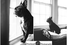 Film Photography-Freeland Photography / Samples of my black and white film photography