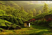Authentic Kerala - 3 Nights & 4 Day Kerala Tour Package / Enjoy the Nature of Gods Own Country. Get Best deals on 4 day & 3 Night tour Packages. Visit : http://www.vnhindia.com/packages?catgid=13&duration=3