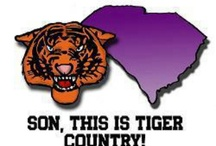 Clemson Girl to the core! / by Michelle Roth