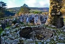 County Carlow Ireland / by Sheena Leon