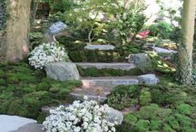 Japan Garden Seminar 2017 / Here are the results of the Japan-Garden-Seminar 2017. The new section is an addition to the moss garden of the 2016 seminar. Special feature is a natural stone seat from which one has a beautiful view of our tea-house with pond. For more information: http://www.zen-information.de/Termin-Kalender-japanische-Wochenenden.htm