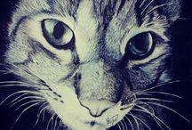 drawing / art . drawing