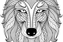 susi väritys