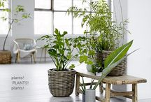 Interior Design Trends 2015 / On trend ideas for 2015  Watch this Board!
