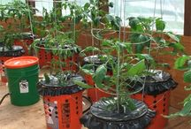 Micro farm