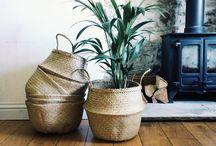 Home | Baskets