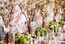 Curly Willow Wonders / party and floral decor