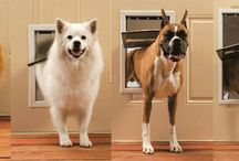 Dog Doors / #DogDoors can create convenience and ease of entry and exit for your pets