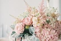 Wedding theme: rustic blush