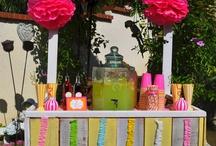 Stella's Lemonade Stand