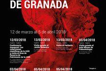Curso #ColeccionesCientíficasUGR
