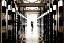 SCHOOL - Kontrast Lys og mørk