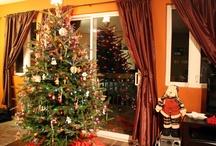 Christmas / by Sarah Baier