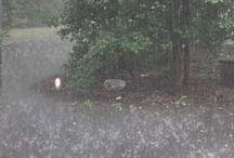 my Rain