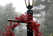 Christmas Wreaths / Start your home decorating at the front door with a warm and hearty Christmas welcome. / by 1000Bulbs.com