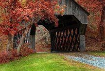 Covered bridges / by Brandis Dunn