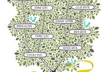 Family Tree Ideas for Kids / by Jeannine Aristeguieta
