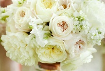 Wedding Flowers / by Deanna DiNardo