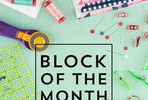 Block of the Month for Beginners