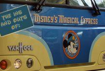 Disney World - Magical Express